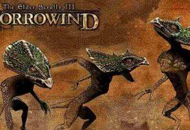 The Elder Scrolls III: Morrowind - описание игры