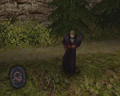 Руна Корень-ловушка из Готики 2 Ночь Ворона