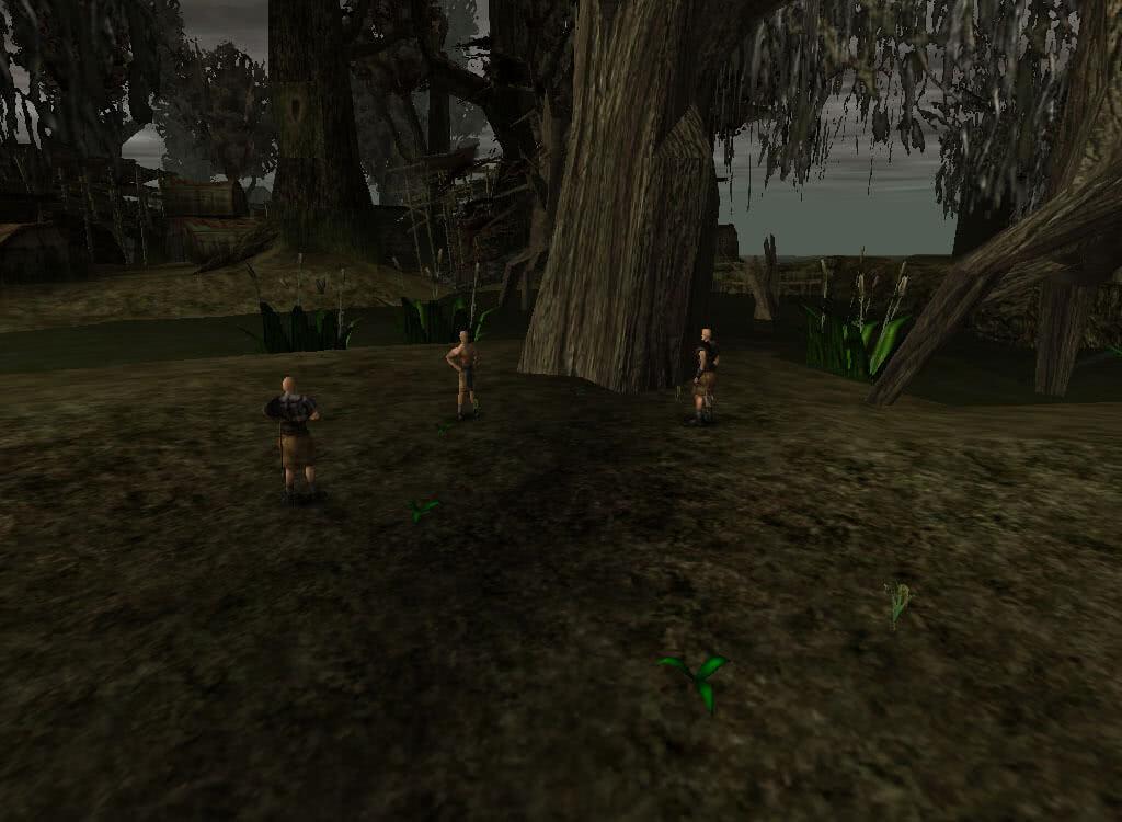 Сборщики болотника – игра Готика 1