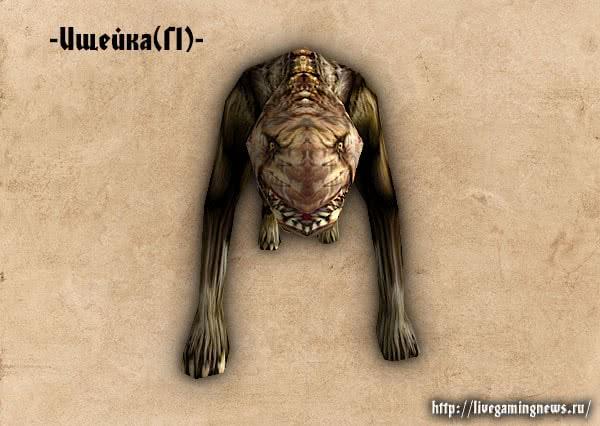 Готика 1 Ищейка – вид спереди