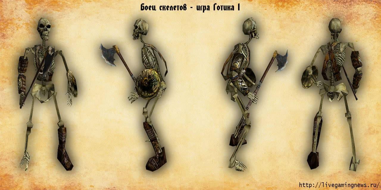 Боец скелетов из Готики 1 во всех ракурсах, вид спереди, сзади, справа, слева