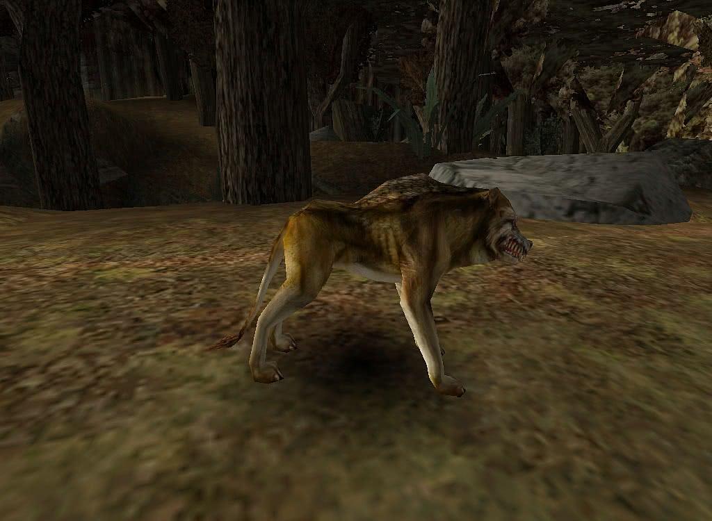 Готика 1 Волк – вид справа