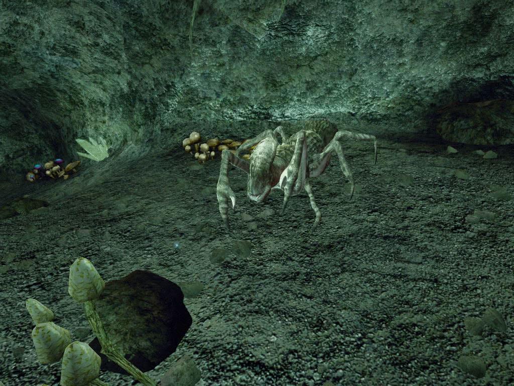 Ползун в южных пещерах Реддока