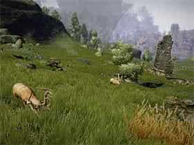 Пугливые олени – Готика 3