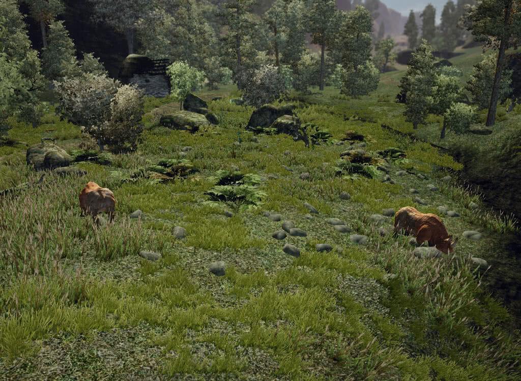 Пасущиеся носороги - игра Готика 3
