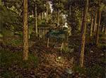 Хижина охотника в лесу - игра Готика 3