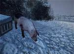 Свинья ест снег - игра Готика 3