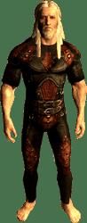 Член Темного Братства Арнбьорн