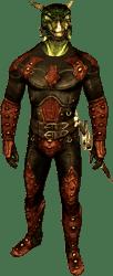 Член Темного Братства Визара