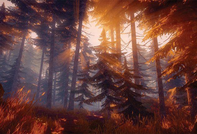 Загадочный и даже фентезийный лес в паранормальной истории.