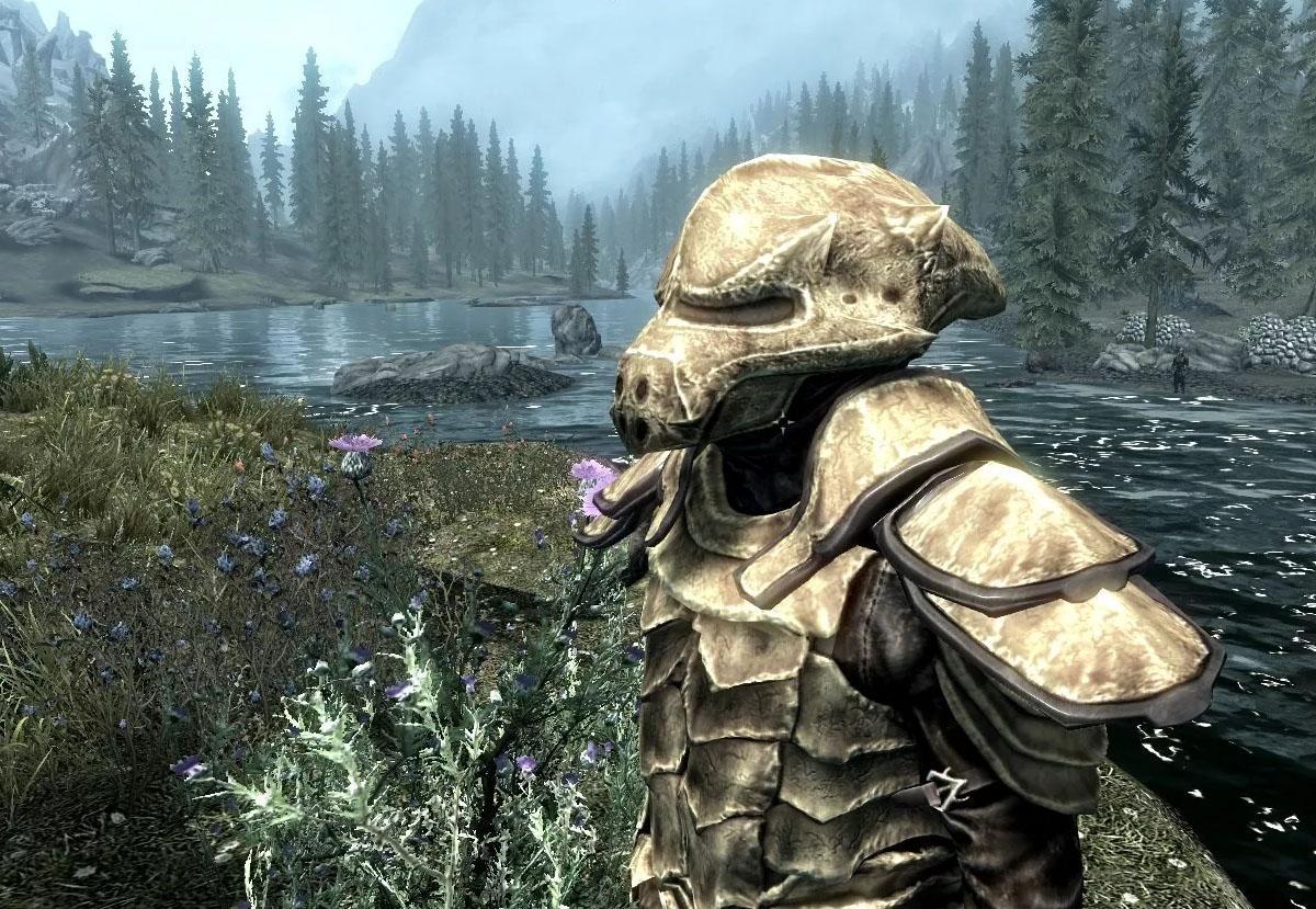 Костяная броня (полный сет) — The Elder Scrolls V: Skyrim
